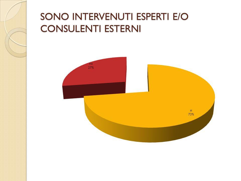 SONO INTERVENUTI ESPERTI E/O CONSULENTI ESTERNI