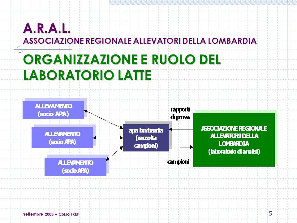 6 CLIENTI DEL LABORATORIO LATTE Clienti diretti : soci dellassociazione (ex art.