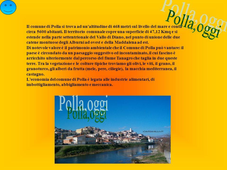Il comune di Polla si trova ad un'altitudine di 468 metri sul livello del mare e conta circa 5600 abitanti. Il territorio comunale copre una superfici