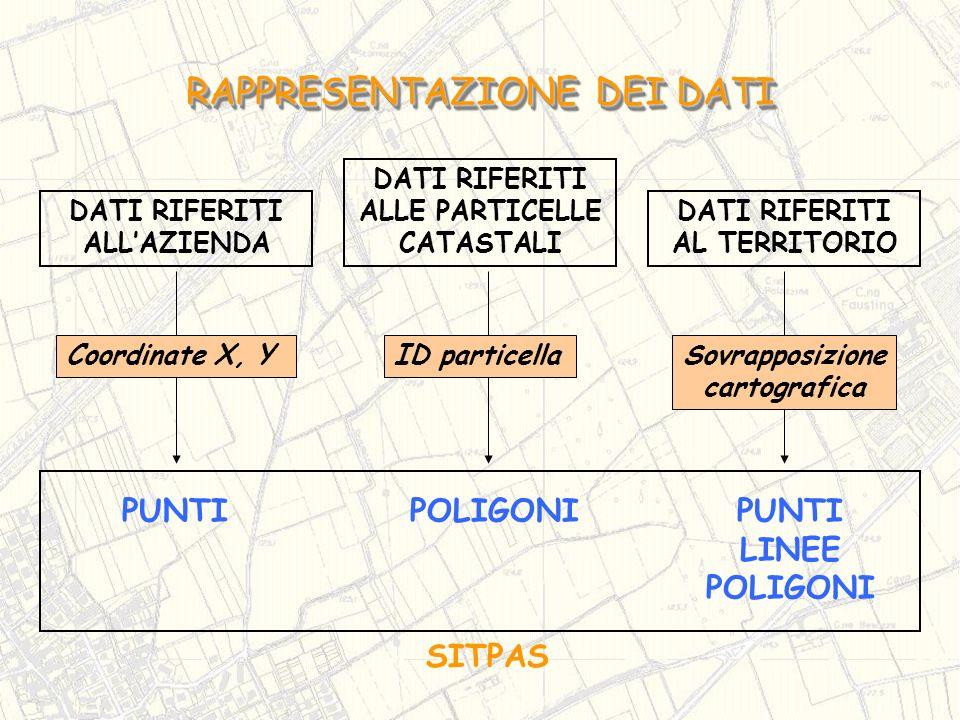 DATI RIFERITI ALLAZIENDA PUNTIPOLIGONI Coordinate X, YID particella DATI RIFERITI ALLE PARTICELLE CATASTALI DATI RIFERITI AL TERRITORIO Sovrapposizion