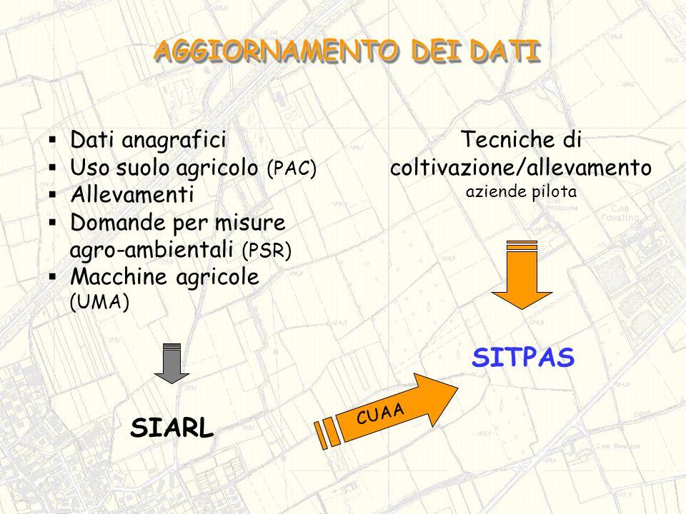 SIARL SITPAS Tecniche di coltivazione/allevamento aziende pilota CUAA Dati anagrafici Uso suolo agricolo (PAC) Allevamenti Domande per misure agro-amb