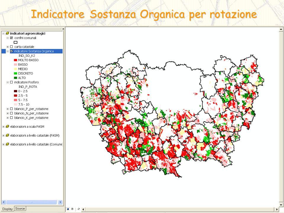 Indicatore Sostanza Organica per rotazione