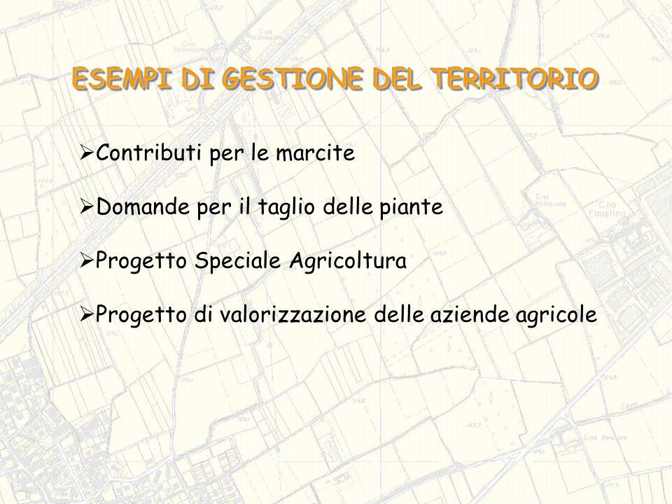 Contributi per le marcite Domande per il taglio delle piante Progetto Speciale Agricoltura Progetto di valorizzazione delle aziende agricole ESEMPI DI