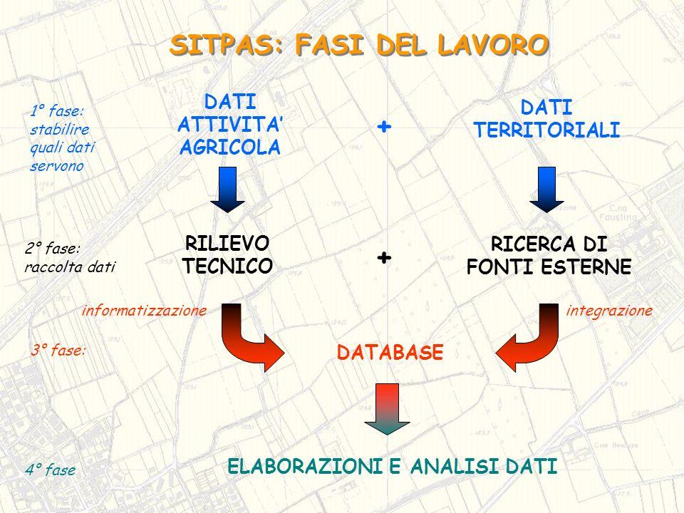 SITPAS: FASI DEL LAVORO ELABORAZIONI E ANALISI DATI 4° fase 3° fase: DATABASE 1° fase: stabilire quali dati servono DATI TERRITORIALI DATI ATTIVITA AG