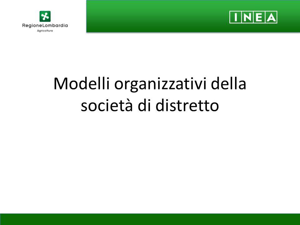 Modelli organizzativi della società di distretto