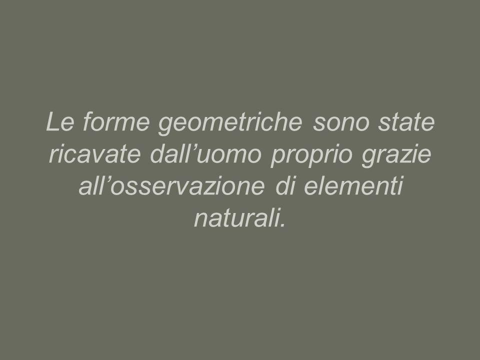 Le forme geometriche sono state ricavate dalluomo proprio grazie allosservazione di elementi naturali.