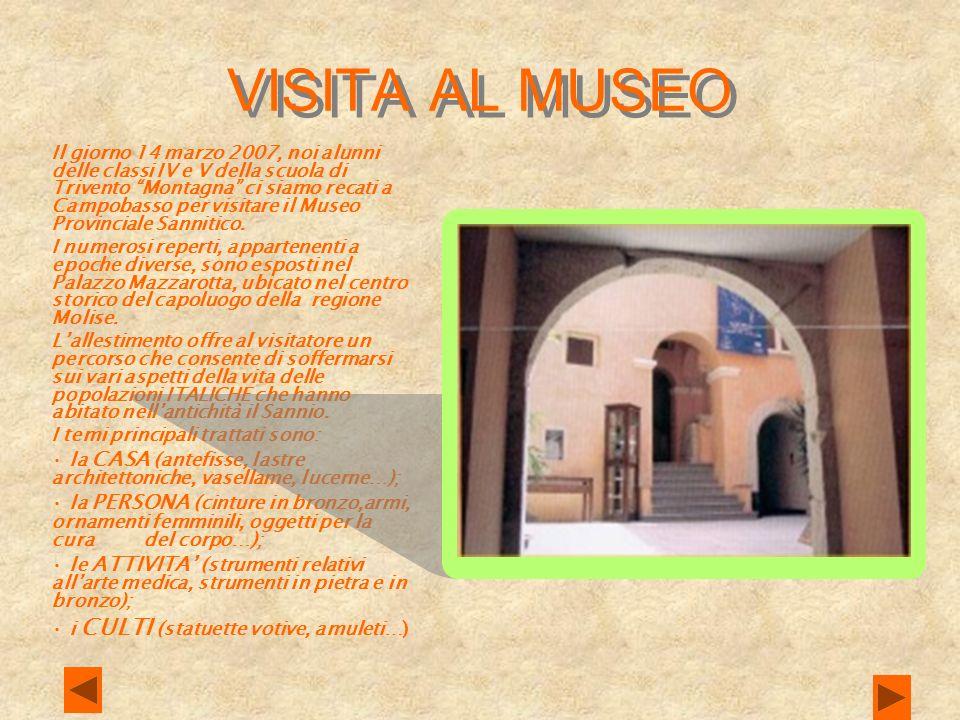 VISITA AL MUSEO Il giorno 14 marzo 2007, noi alunni delle classi IV e V della scuola di Trivento Montagna ci siamo recati a Campobasso per visitare il Museo Provinciale Sannitico.