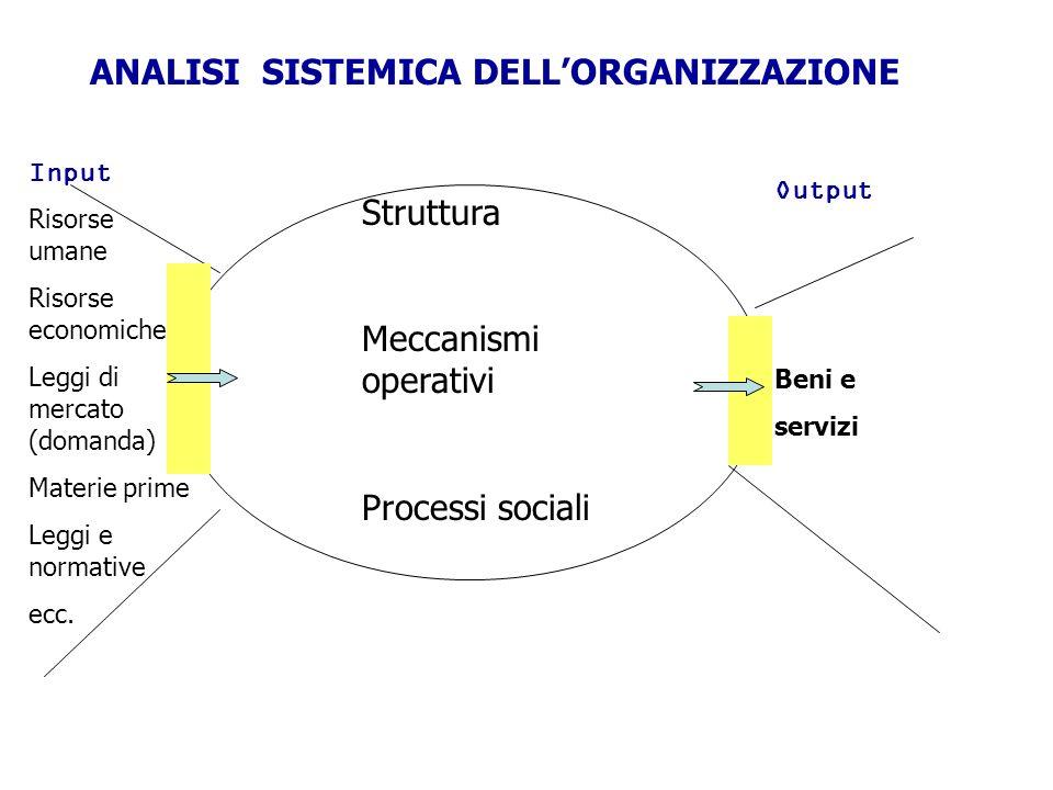 Input Risorse umane Risorse economiche Leggi di mercato (domanda) Materie prime Leggi e normative ecc. ANALISI SISTEMICA DELLORGANIZZAZIONE Output Ben
