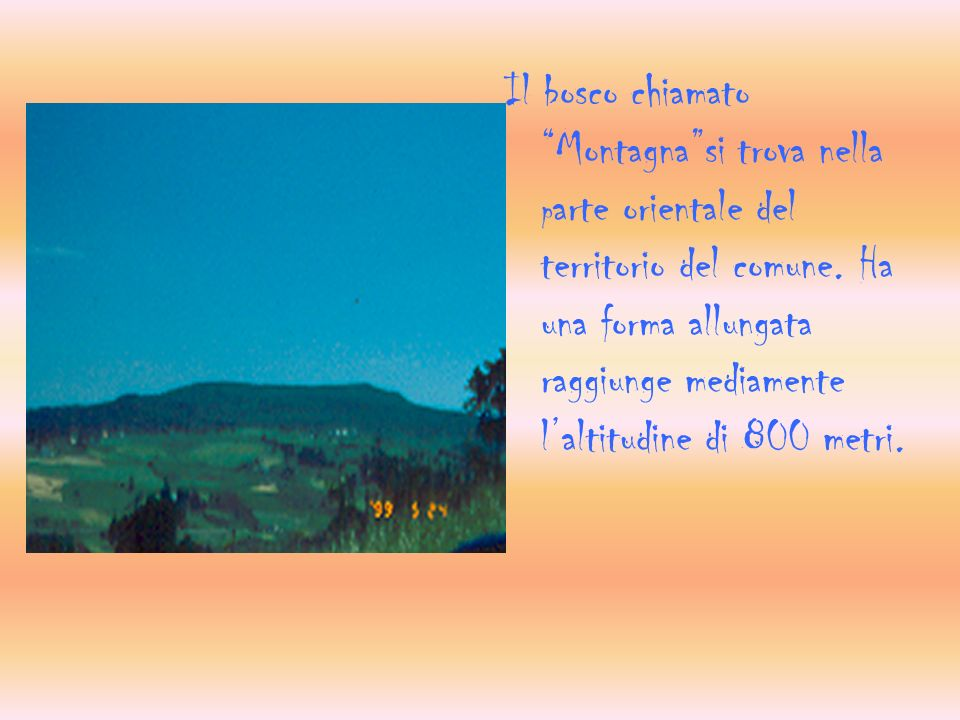 Il bosco chiamato Montagnasi trova nella p arte orientale del territorio del comune.