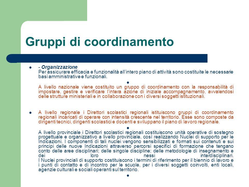 Gruppi di coordinamento - Organizzazione Per assicurare efficacia e funzionalità allintero piano di attività sono costituite le necessarie basi ammini