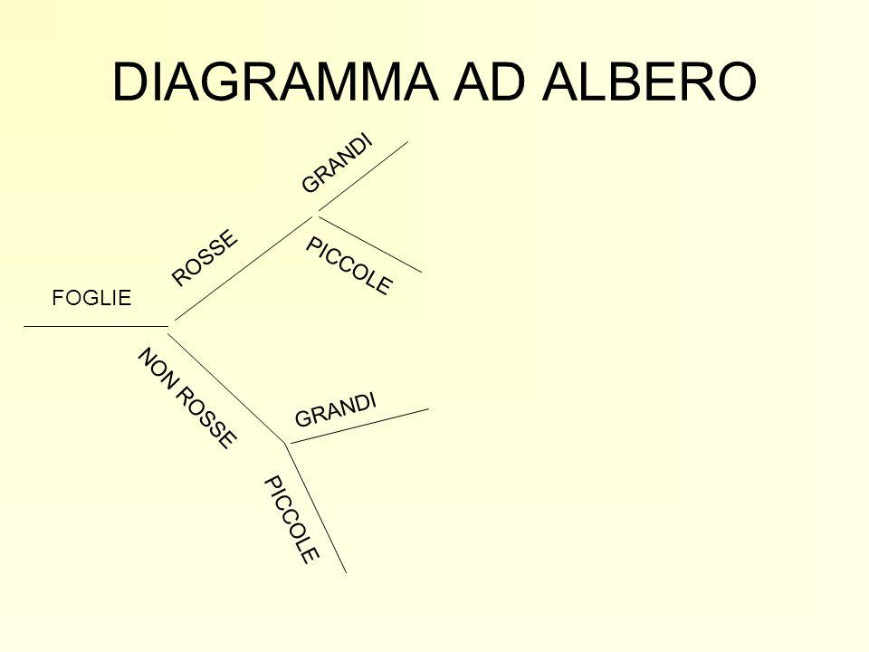 DIAGRAMMA AD ALBERO FOGLIE ROSSE NON ROSSE GRANDI PICCOLE GRANDI PICCOLE