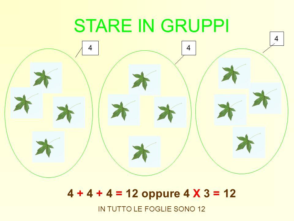 STARE IN GRUPPI 4 + 4 + 4 = 12 oppure 4 X 3 = 12 IN TUTTO LE FOGLIE SONO 12 44 4