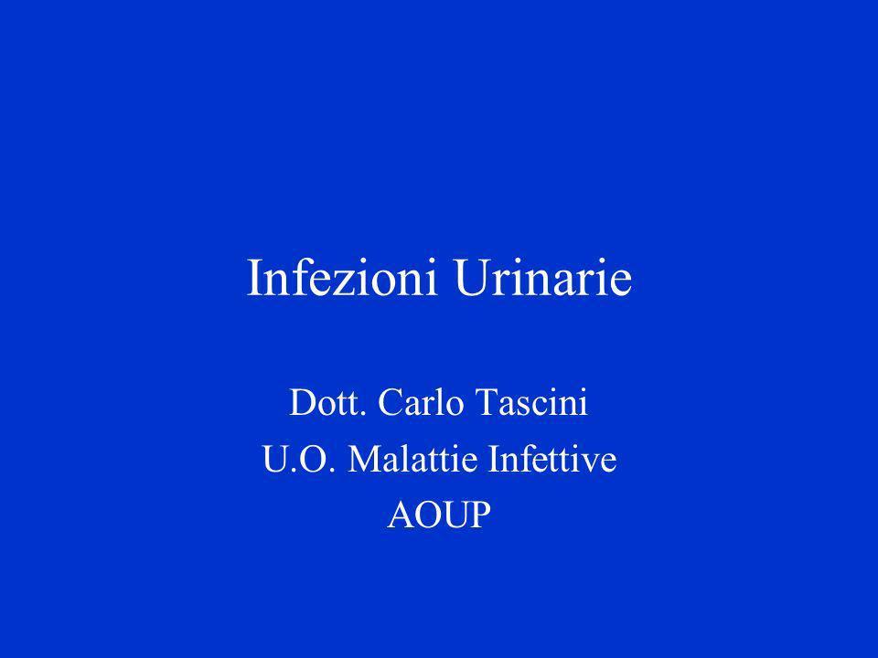 Infezioni Urinarie Dott. Carlo Tascini U.O. Malattie Infettive AOUP