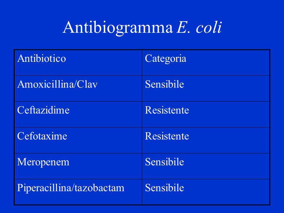 Antibiogramma E. coli AntibioticoCategoria Amoxicillina/ClavSensibile CeftazidimeResistente CefotaximeResistente MeropenemSensibile Piperacillina/tazo