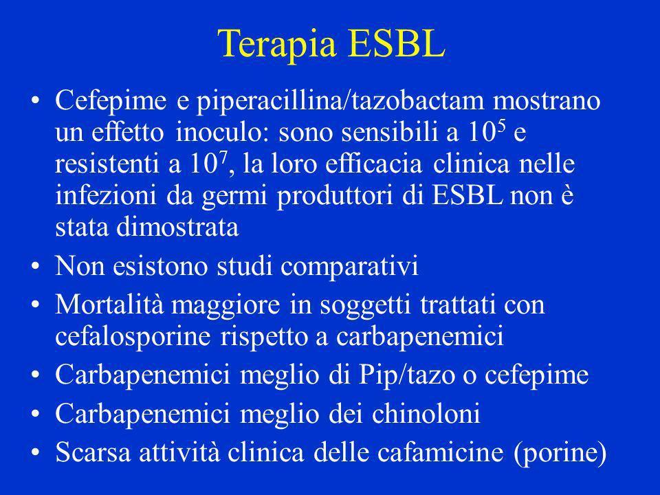 Terapia ESBL Cefepime e piperacillina/tazobactam mostrano un effetto inoculo: sono sensibili a 10 5 e resistenti a 10 7, la loro efficacia clinica nel