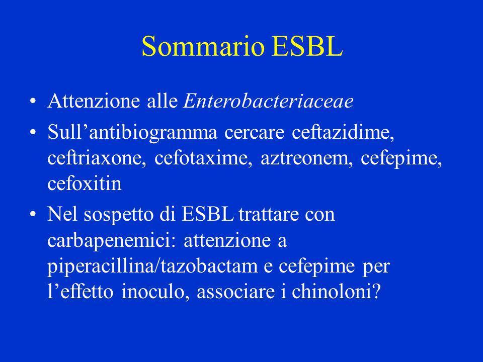 Sommario ESBL Attenzione alle Enterobacteriaceae Sullantibiogramma cercare ceftazidime, ceftriaxone, cefotaxime, aztreonem, cefepime, cefoxitin Nel so