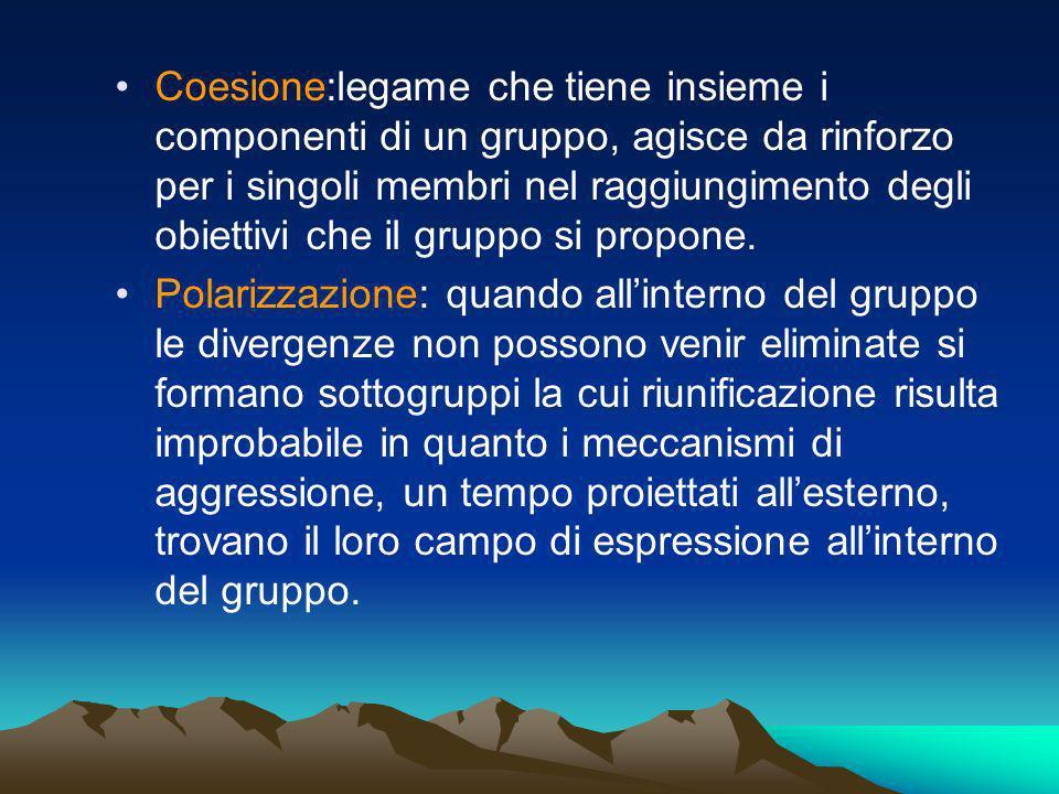 Coesione:legame che tiene insieme i componenti di un gruppo, agisce da rinforzo per i singoli membri nel raggiungimento degli obiettivi che il gruppo