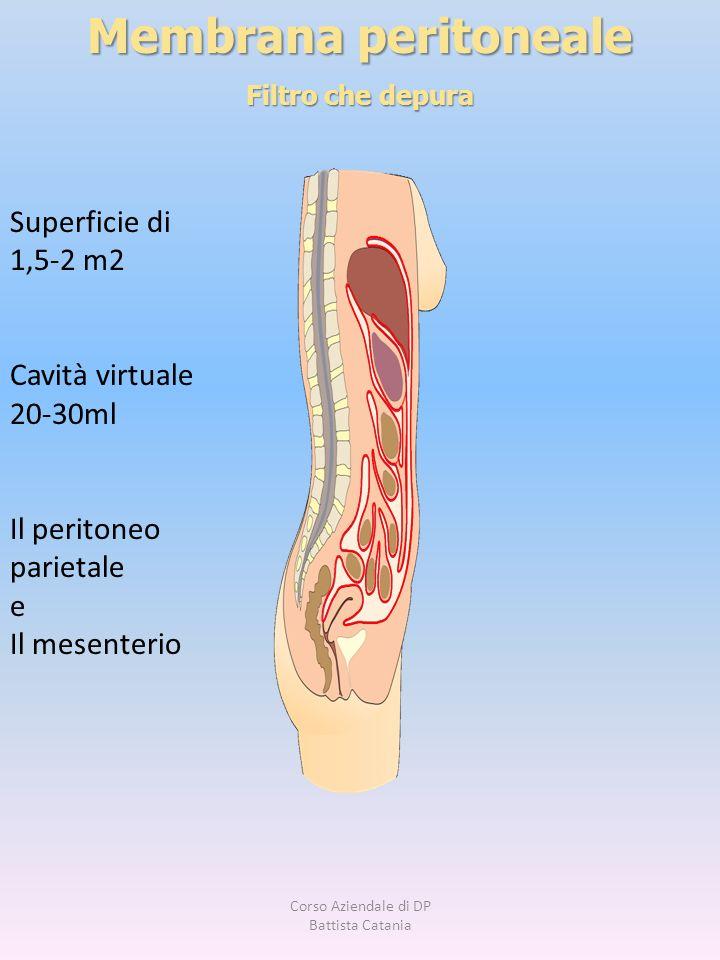 Membrana peritoneale Filtro che depura Superficie di 1,5-2 m2 Cavità virtuale 20-30ml Il peritoneo parietale e Il mesenterio Corso Aziendale di DP Bat