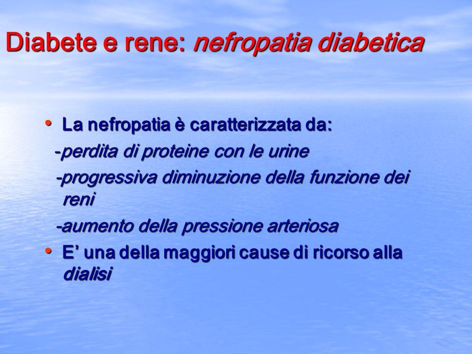 Diabete e rene: nefropatia diabetica La nefropatia è caratterizzata da: La nefropatia è caratterizzata da: -perdita di proteine con le urine -perdita