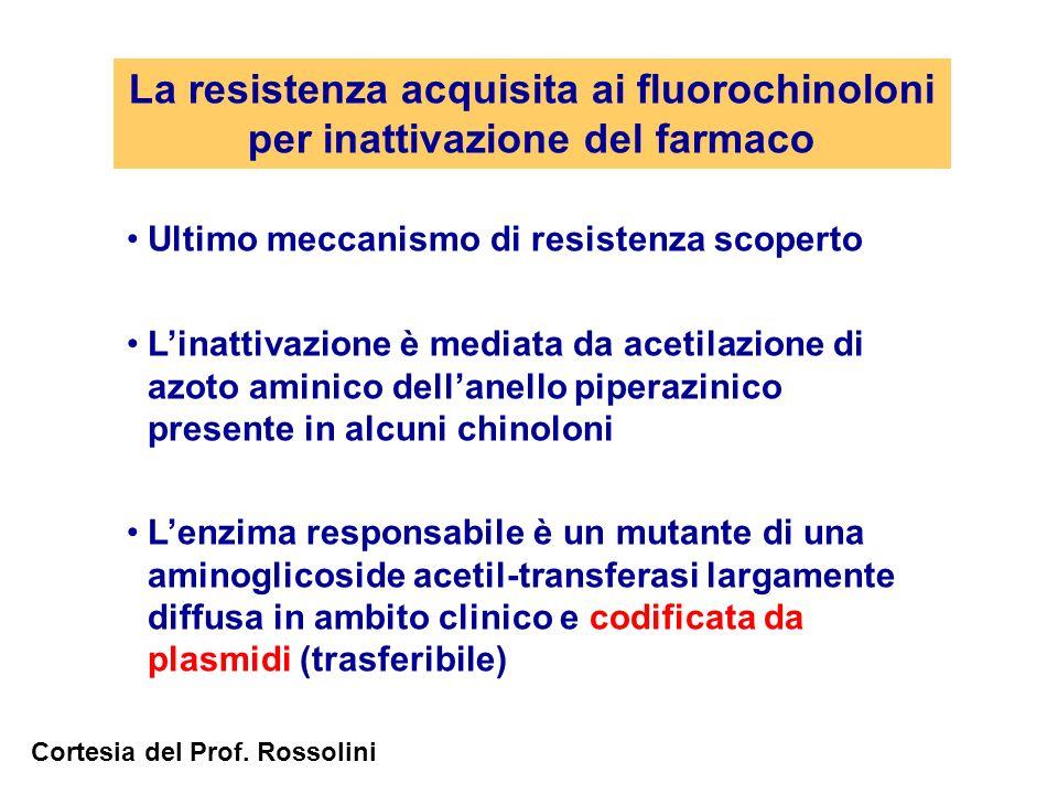 La resistenza acquisita ai fluorochinoloni per inattivazione del farmaco Ultimo meccanismo di resistenza scoperto Linattivazione è mediata da acetilaz