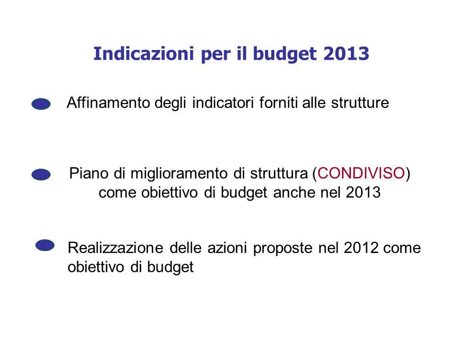 Indicazioni per il budget 2013 Realizzazione delle azioni proposte nel 2012 come obiettivo di budget Affinamento degli indicatori forniti alle struttu