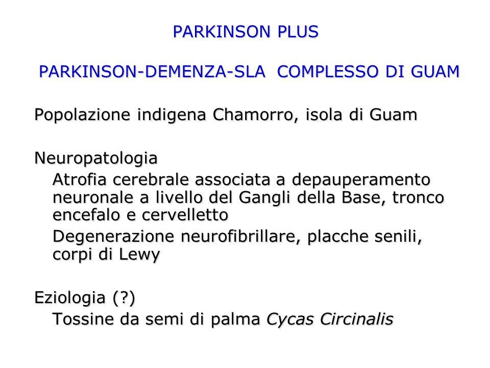 PARKINSON PLUS PARKINSON-DEMENZA-SLA COMPLESSO DI GUAM Popolazione indigena Chamorro, isola di Guam Neuropatologia Atrofia cerebrale associata a depauperamento neuronale a livello del Gangli della Base, tronco encefalo e cervelletto Degenerazione neurofibrillare, placche senili, corpi di Lewy Eziologia (?) Tossine da semi di palma Cycas Circinalis