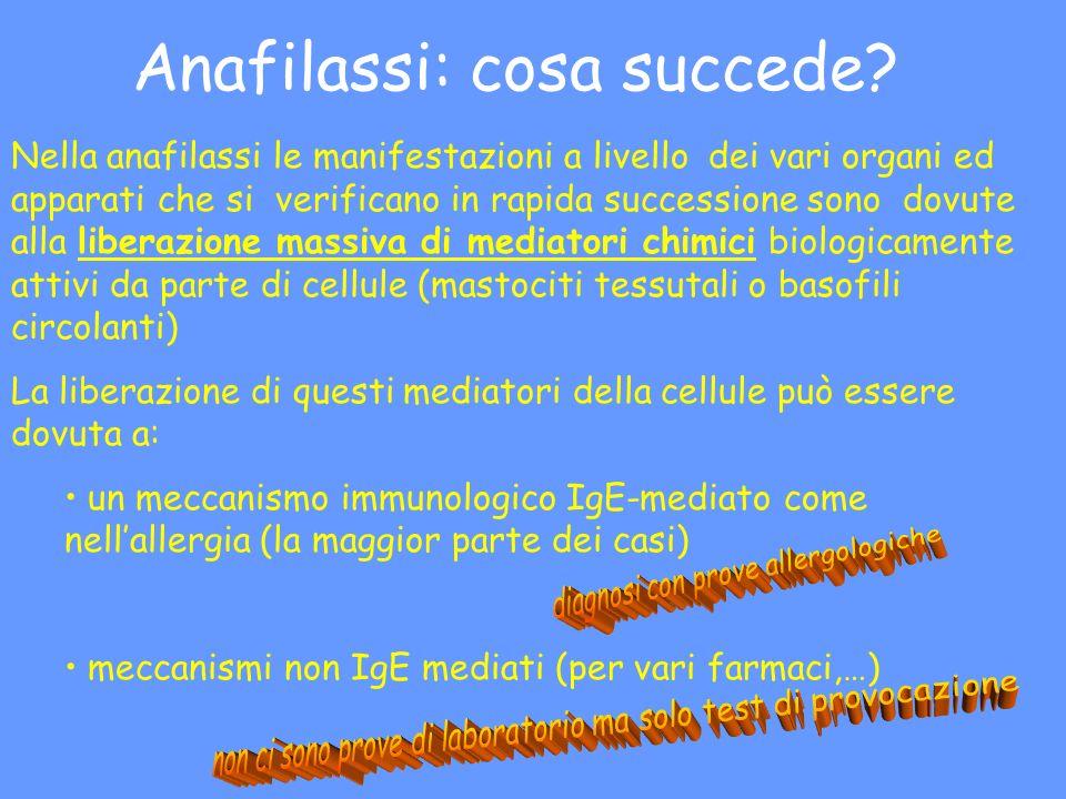 Anafilassi: cosa succede? Nella anafilassi le manifestazioni a livello dei vari organi ed apparati che si verificano in rapida successione sono dovute
