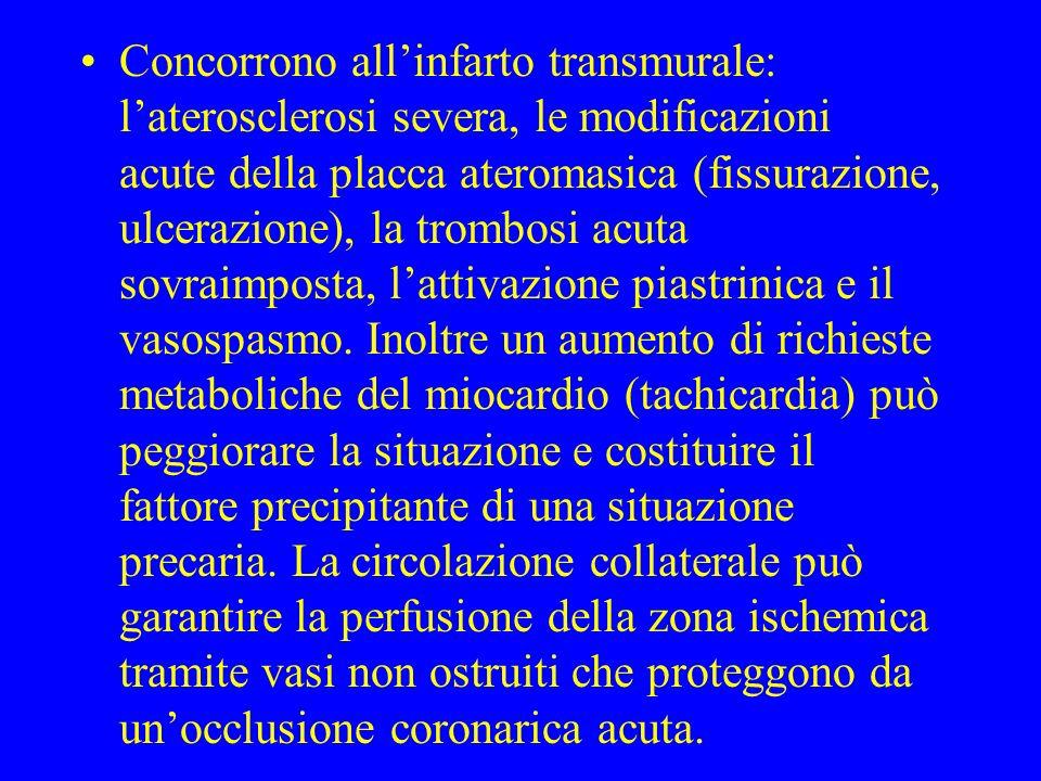 Concorrono allinfarto transmurale: laterosclerosi severa, le modificazioni acute della placca ateromasica (fissurazione, ulcerazione), la trombosi acu