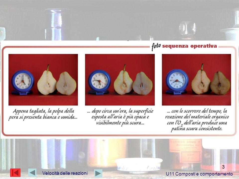 4 Velocità delle reazioni U11 Composti e comportamento Molteplici sono i fattori che possono intervenire sulla velocità delle reazioni.