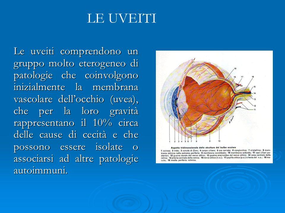 Le uveiti comprendono un gruppo molto eterogeneo di patologie che coinvolgono inizialmente la membrana vascolare dellocchio (uvea), che per la loro gr