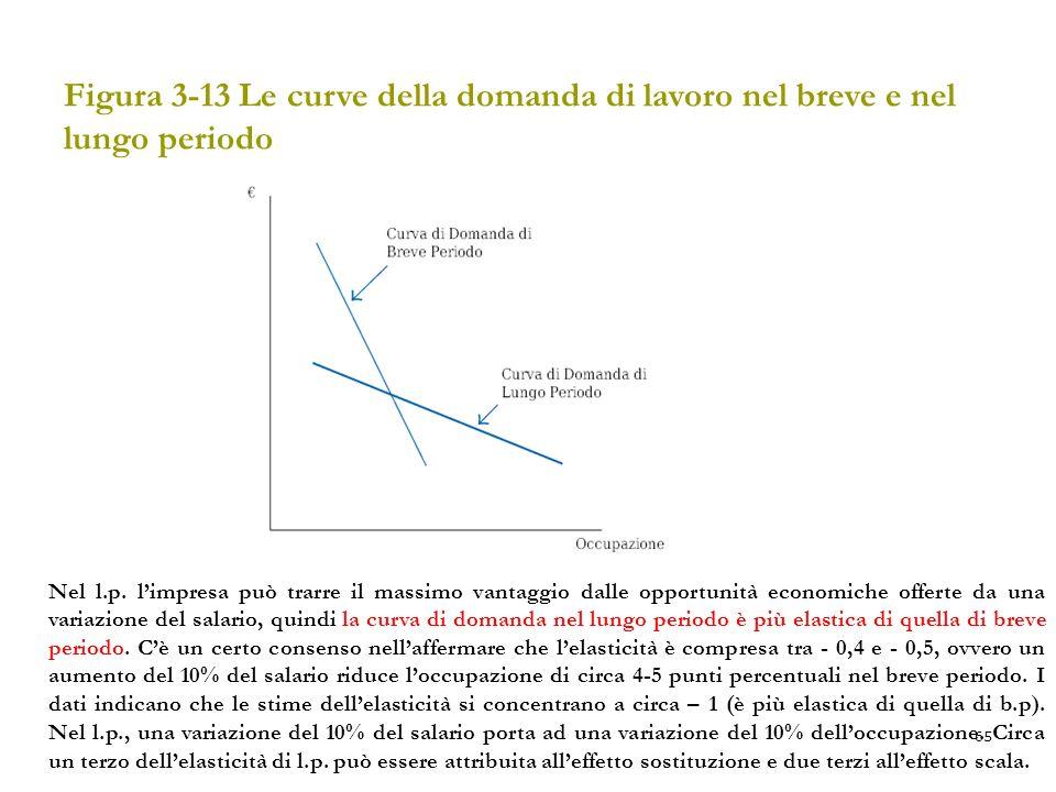 65 Figura 3-13 Le curve della domanda di lavoro nel breve e nel lungo periodo Nel l.p. limpresa può trarre il massimo vantaggio dalle opportunità econ