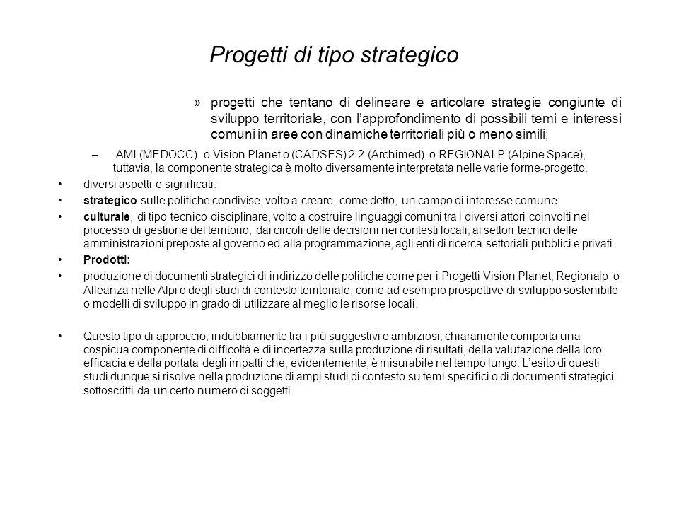 Progetti di tipo strategico »progetti che tentano di delineare e articolare strategie congiunte di sviluppo territoriale, con lapprofondimento di poss