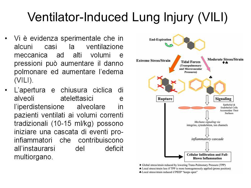 Ventilator-Induced Lung Injury (VILI) Vi è evidenza sperimentale che in alcuni casi la ventilazione meccanica ad alti volumi e pressioni può aumentare