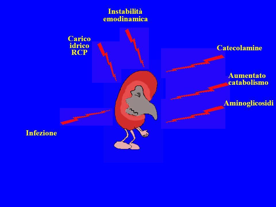 Infezione Carico idrico RCP Instabilità emodinamica Catecolamine Aumentato catabolismo Aminoglicosidi
