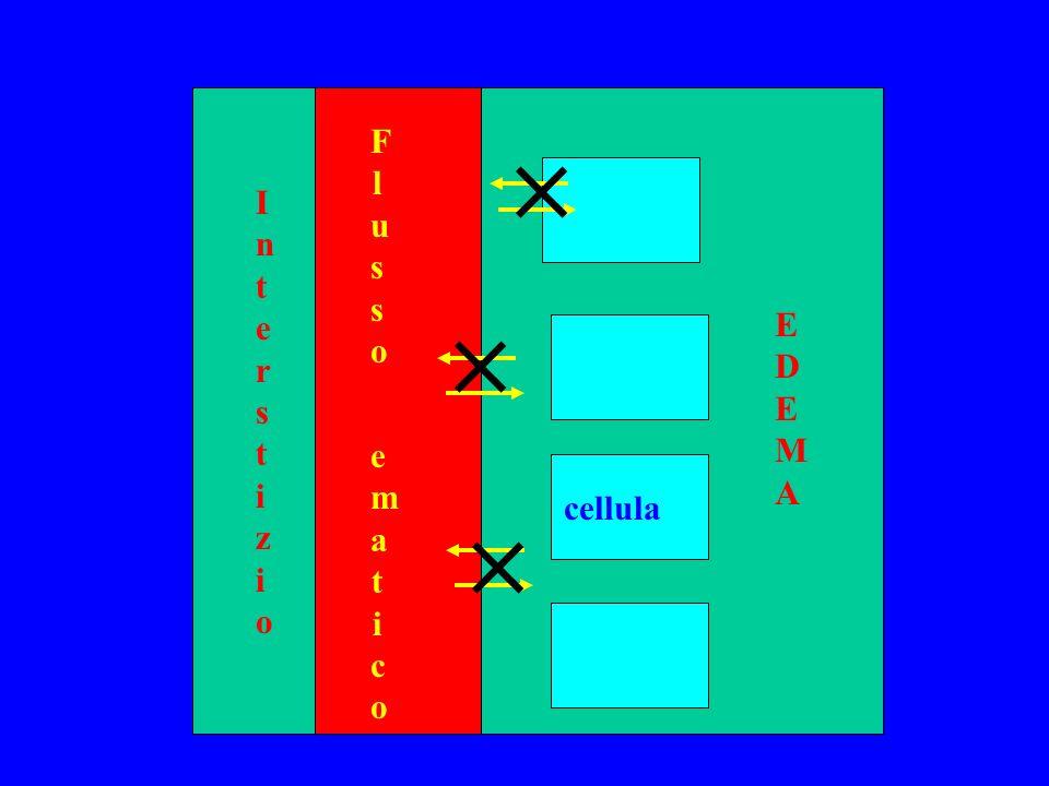 F l u s s o e m a t i c o cellula InterstizioInterstizio EDEMAEDEMA