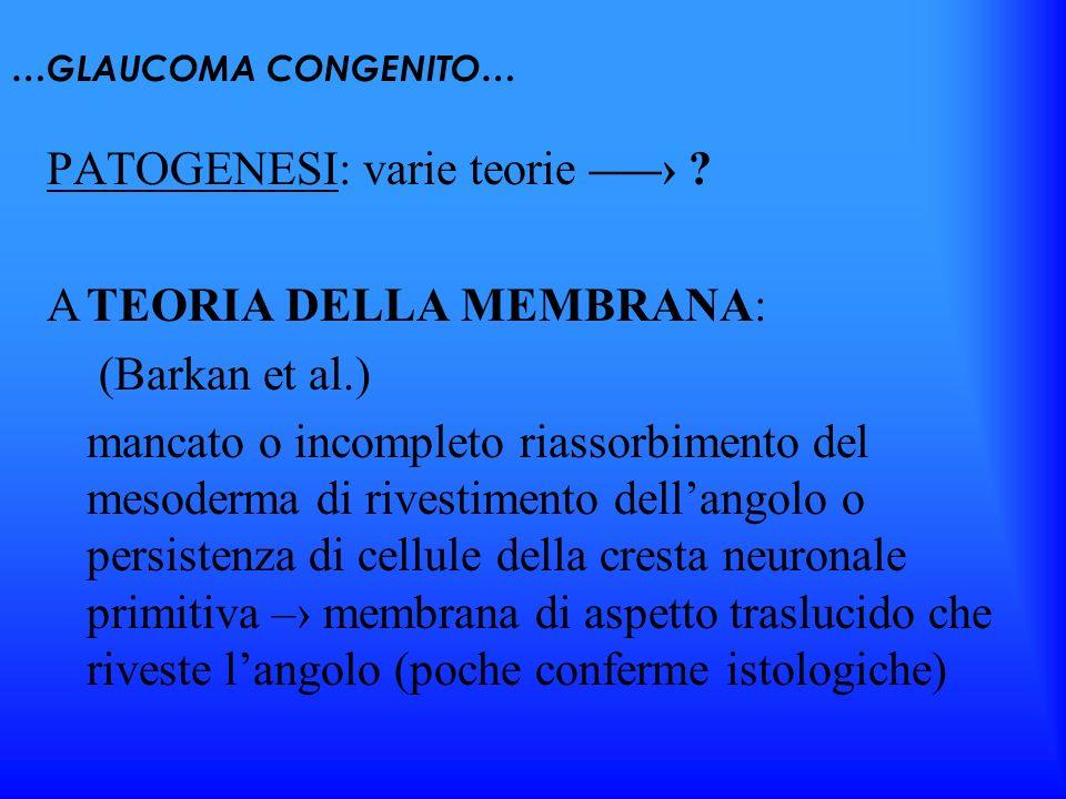 …GLAUCOMA CONGENITO… PATOGENESI: varie teorie – ? TEORIA DELLA MEMBRANA: (Barkan et al.) mancato o incompleto riassorbimento del mesoderma di rivestim