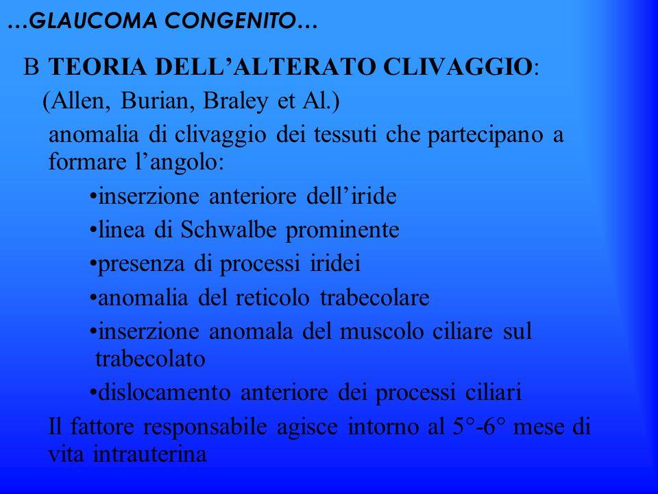 …GLAUCOMA CONGENITO… TEORIA DELLALTERATO CLIVAGGIO: (Allen, Burian, Braley et Al.) anomalia di clivaggio dei tessuti che partecipano a formare langolo