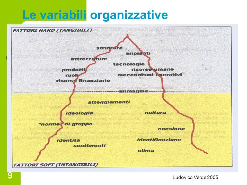 Ludovico Verde 2005 9 Le variabili organizzative