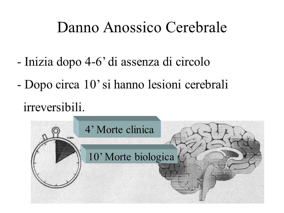 - Inizia dopo 4-6 di assenza di circolo - Dopo circa 10 si hanno lesioni cerebrali irreversibili. 10 Morte biologica 4 Morte clinica Danno Anossico Ce