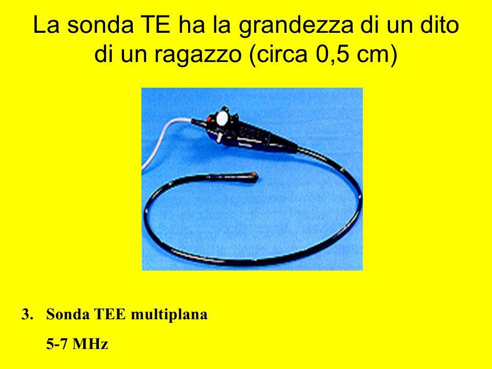 La sonda TE ha la grandezza di un dito di un ragazzo (circa 0,5 cm) 3.Sonda TEE multiplana 5-7 MHz