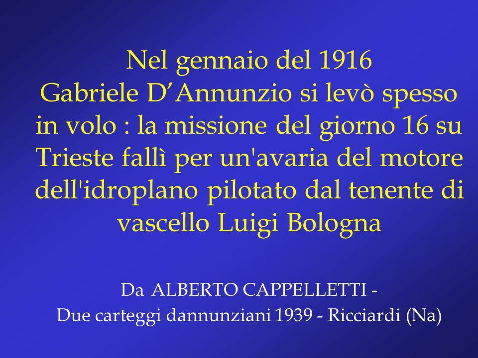 Nel gennaio del 1916 Gabriele DAnnunzio si levò spesso in volo : la missione del giorno 16 su Trieste fallì per un'avaria del motore dell'idroplano pi