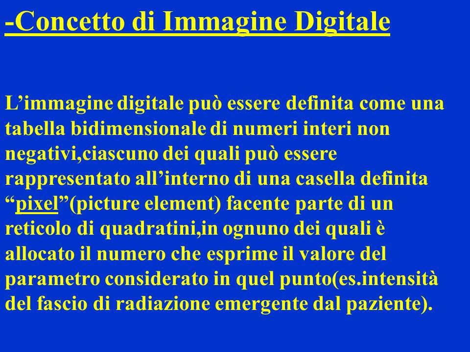 -Concetto di Immagine Digitale Limmagine digitale può essere definita come una tabella bidimensionale di numeri interi non negativi,ciascuno dei quali