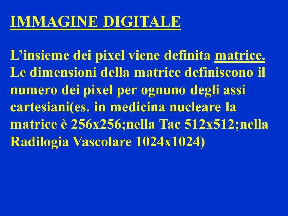 IMMAGINE DIGITALE Linsieme dei pixel viene definita matrice. Le dimensioni della matrice definiscono il numero dei pixel per ognuno degli assi cartesi