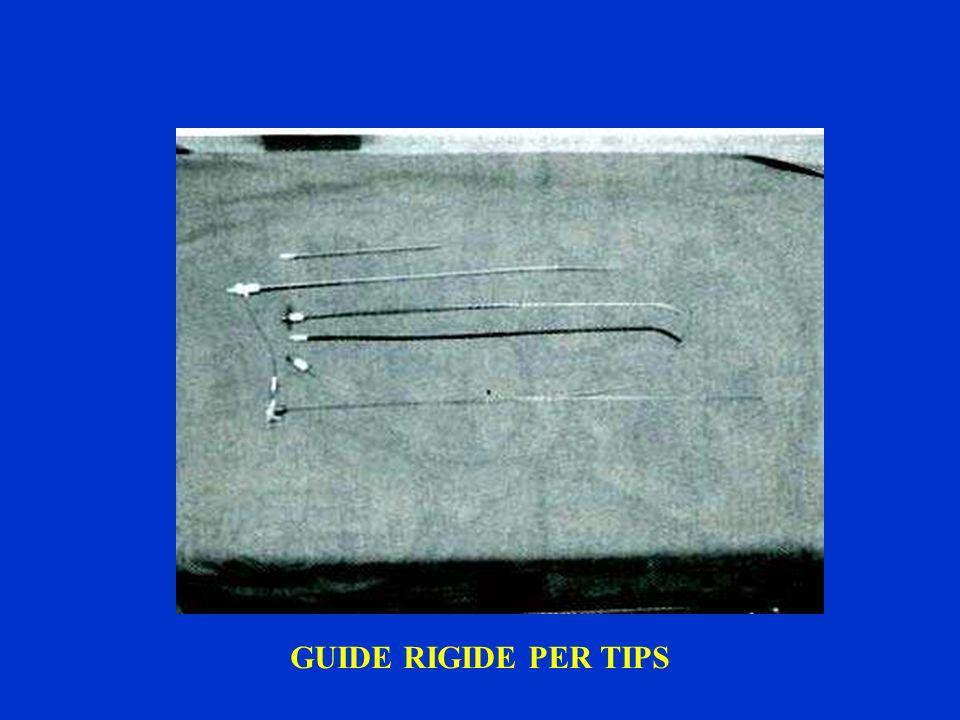 GUIDE RIGIDE PER TIPS