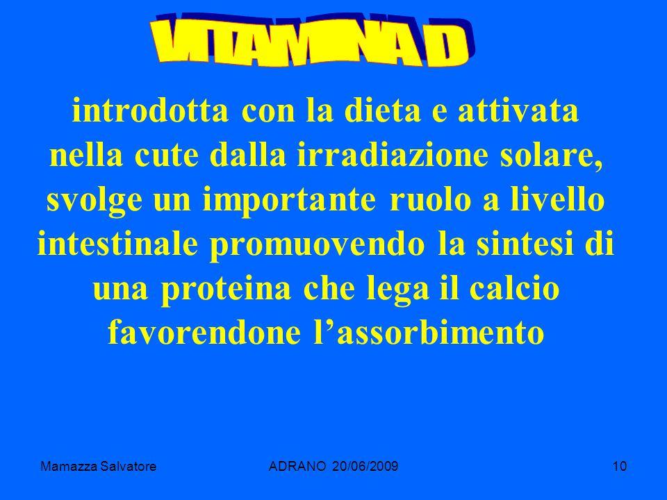Mamazza SalvatoreADRANO 20/06/200910 introdotta con la dieta e attivata nella cute dalla irradiazione solare, svolge un importante ruolo a livello int