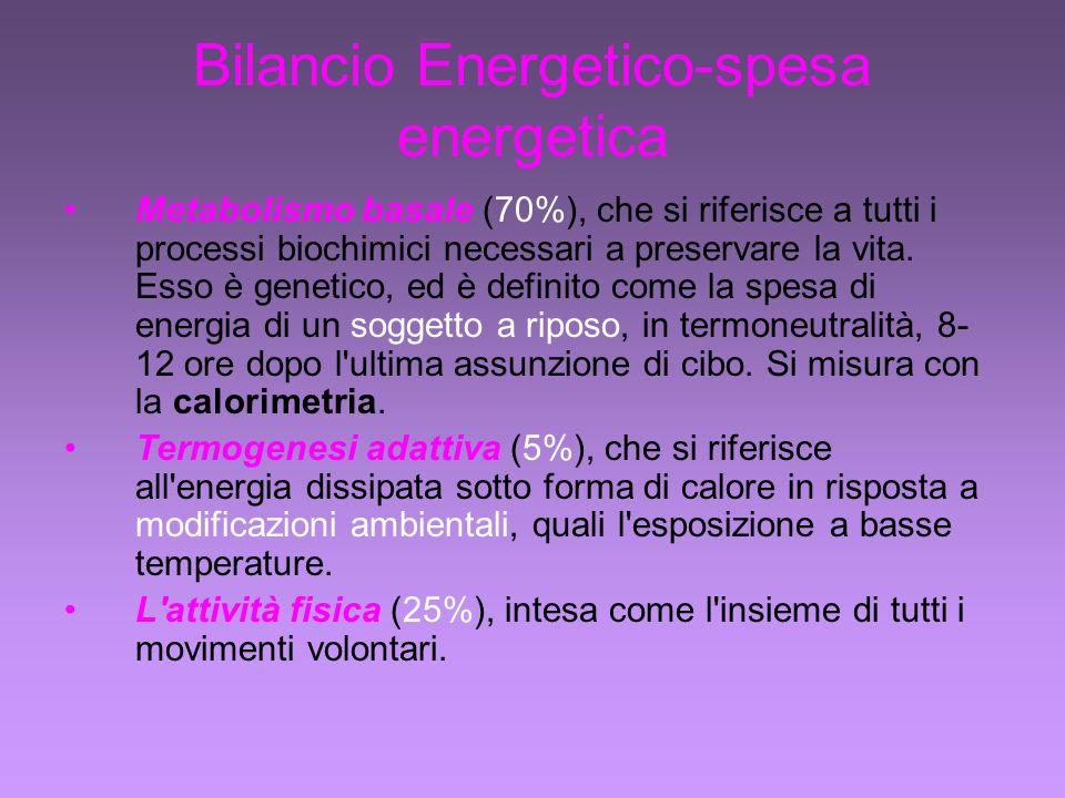 Bilancio Energetico-spesa energetica Metabolismo basale (70%), che si riferisce a tutti i processi biochimici necessari a preservare la vita.