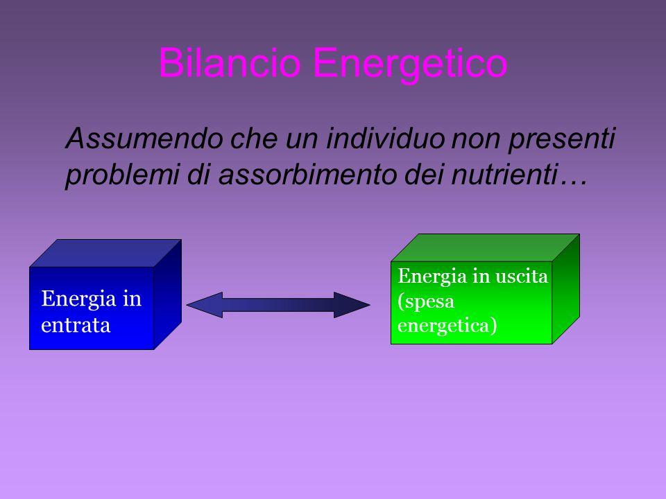 Bilancio Energetico Assumendo che un individuo non presenti problemi di assorbimento dei nutrienti… Energia in uscita (spesa energetica) Energia in entrata