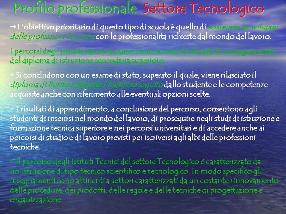 Profilo professionale Settore Tecnologico L obiettivo prioritario di questo tipo di scuola è quello di sostenere lo sviluppo delle professioni tecniche con le professionalità richieste dal mondo del lavoro.