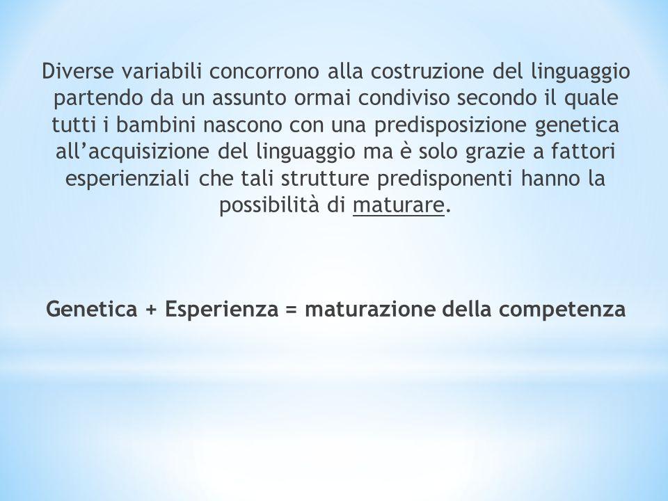 Prelinguaggio (fino ai 18 mesi) Piccolo linguaggio (dai 18 mesi ai 3 anni) Linguaggio (dai 3 anni)