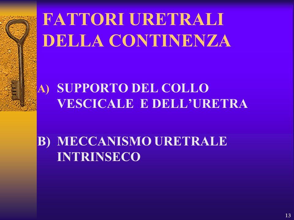 13 FATTORI URETRALI DELLA CONTINENZA A) SUPPORTO DEL COLLO VESCICALE E DELLURETRA B) MECCANISMO URETRALE INTRINSECO